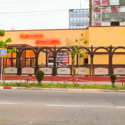 Terasa Restaurant Orhideea
